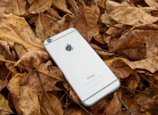 Lonely Lost iPhone in the Leaves