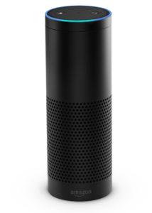 Amazon Echo, Alexa the Digital Assistant
